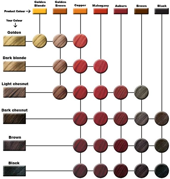 World S End Natural Products Henna Guide Amp Shade Chart