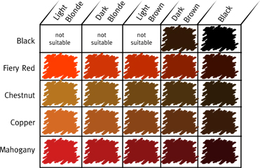 World S End Natural Products Henna Guide Shade Chart